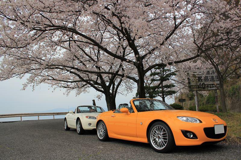 奥琵琶湖10