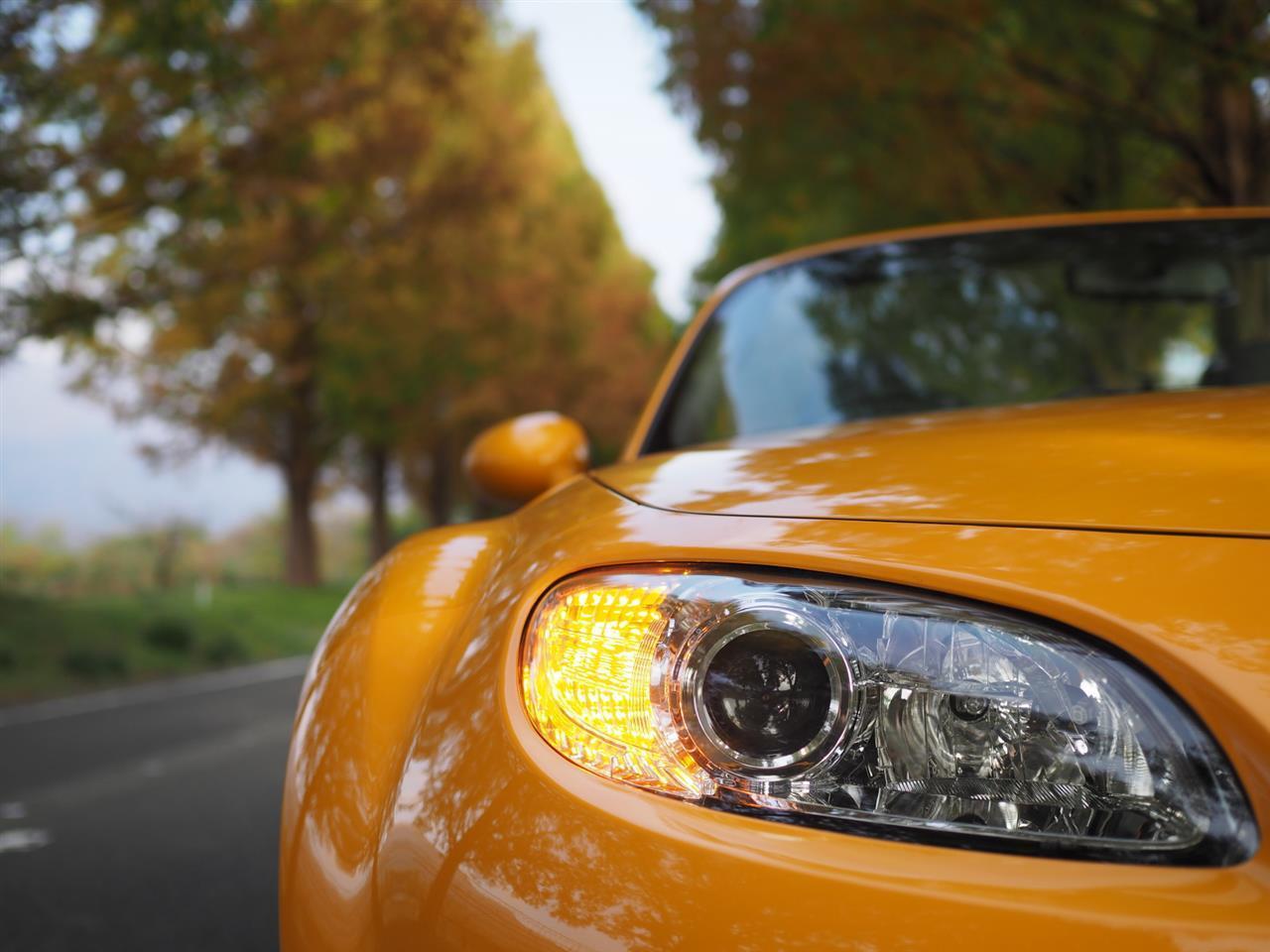 奥琵琶湖紅葉ドライブ 13