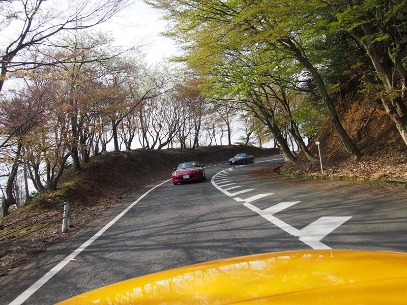 色出来すぎツーリングin海津大崎&秘密の桜トンネル22