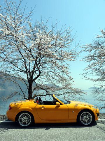 琵琶湖03