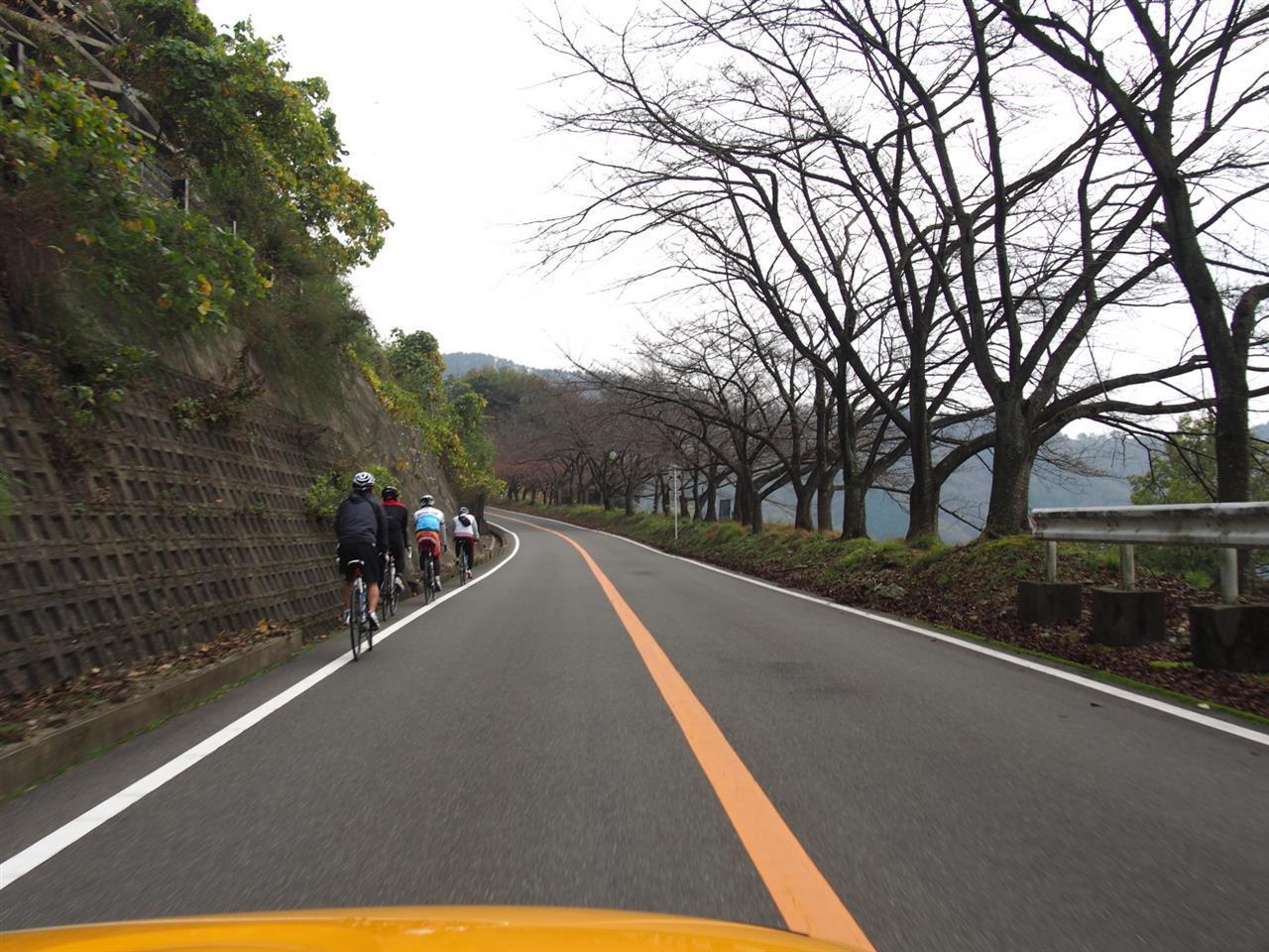 奥琵琶湖紅葉ドライブ 19