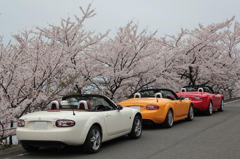 奥琵琶湖23