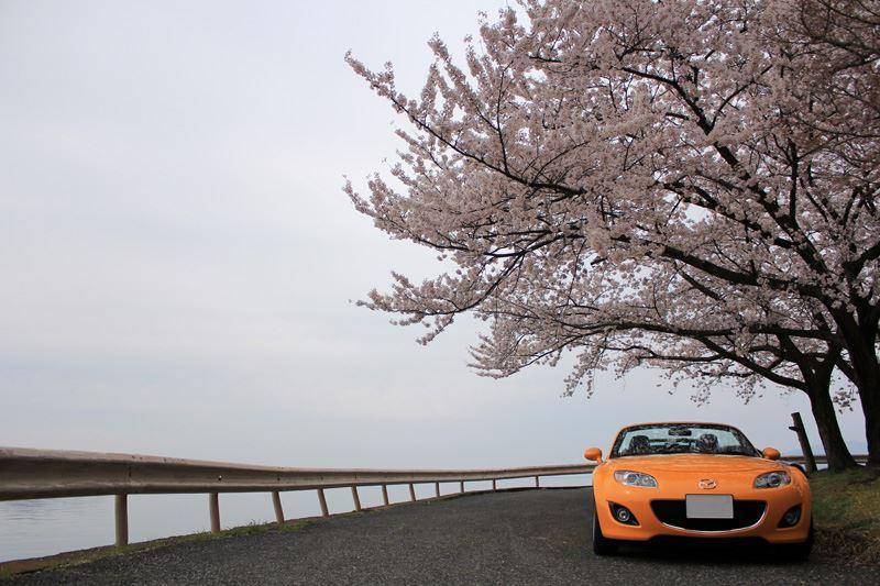 奥琵琶湖11