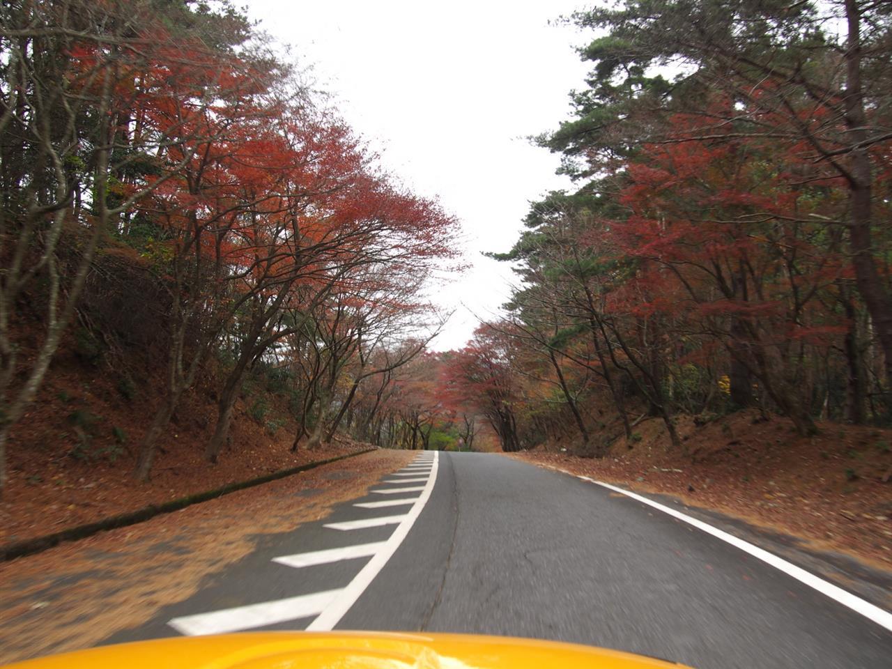 奥琵琶湖紅葉ドライブ 24