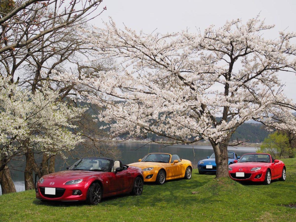 色出来すぎツーリングin海津大崎&秘密の桜トンネル35