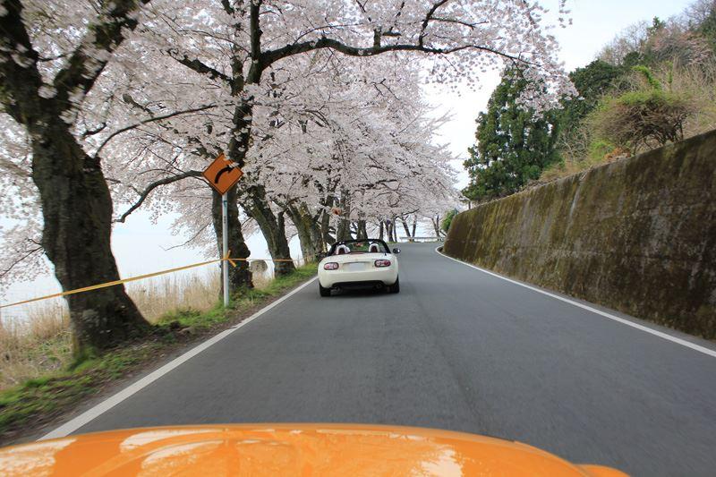 奥琵琶湖06