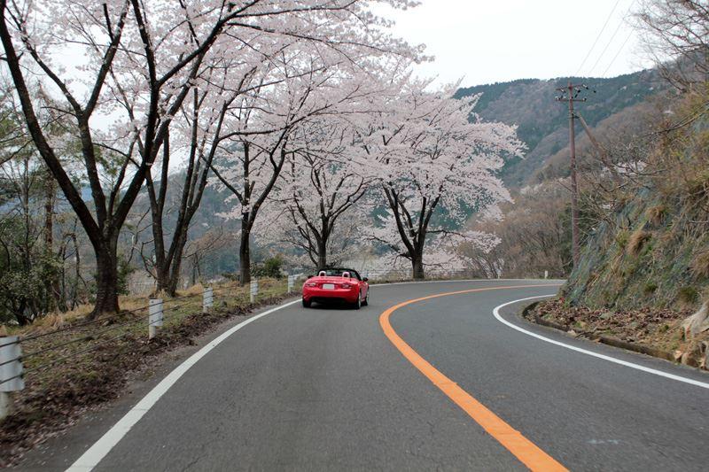 奥琵琶湖20