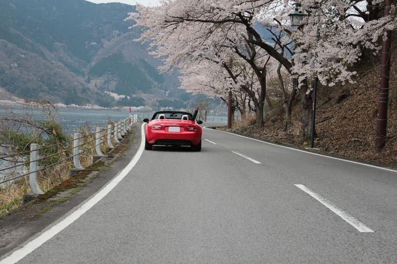 奥琵琶湖24