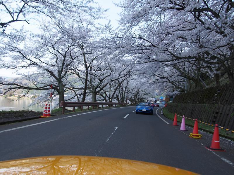 色出来すぎツーリングin海津大崎&秘密の桜トンネル11