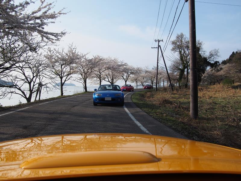 色出来すぎツーリングin海津大崎&秘密の桜トンネル14