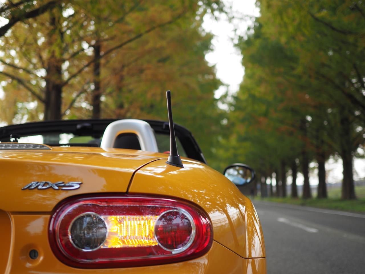 奥琵琶湖紅葉ドライブ 12