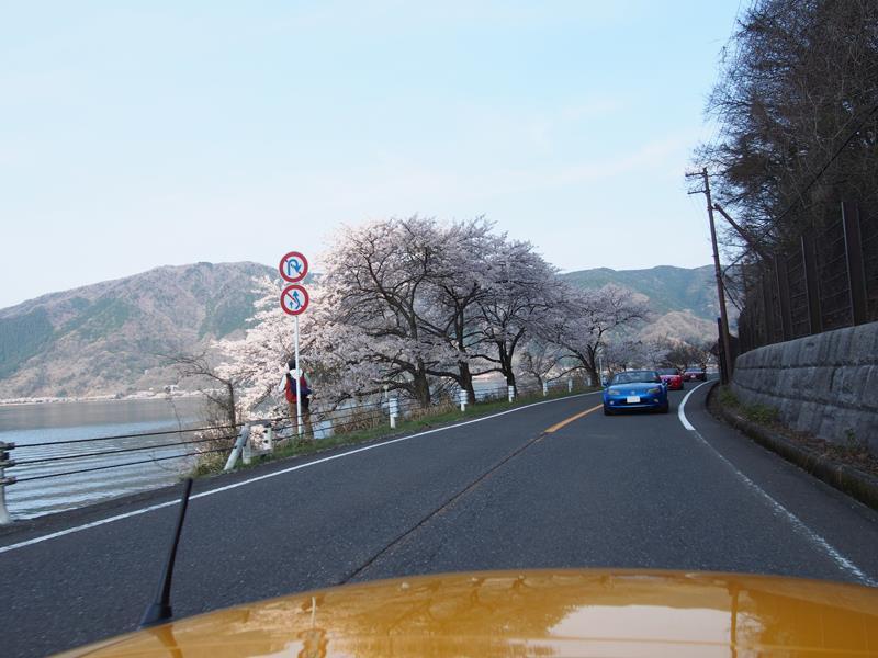 色出来すぎツーリングin海津大崎&秘密の桜トンネル17