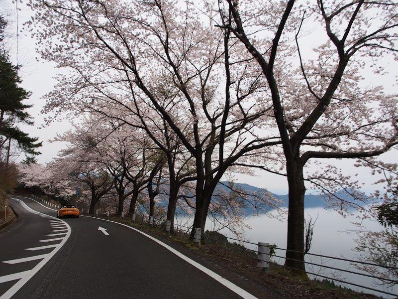 奥琵琶湖14