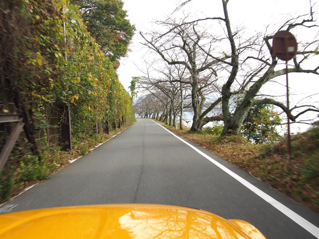 奥琵琶湖紅葉ドライブ 17