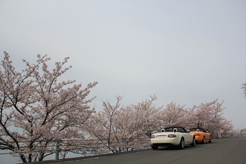 奥琵琶湖13