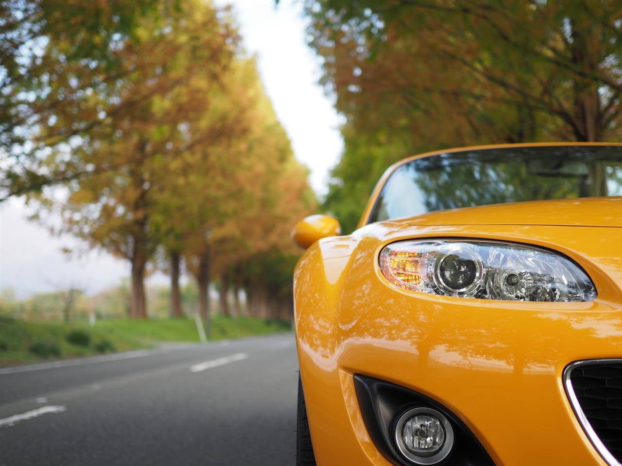 奥琵琶湖紅葉ドライブ 15