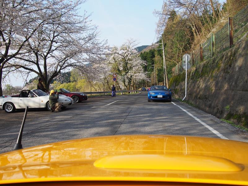 色出来すぎツーリングin海津大崎&秘密の桜トンネル16