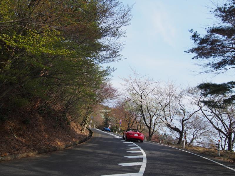 色出来すぎツーリングin海津大崎&秘密の桜トンネル23