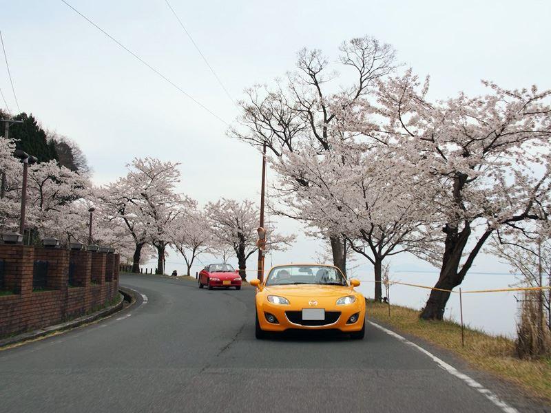 奥琵琶湖08