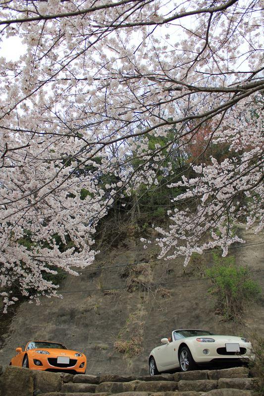 奥琵琶湖02