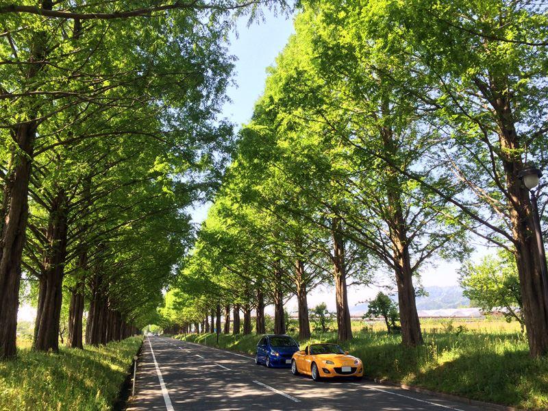 奥琵琶湖01