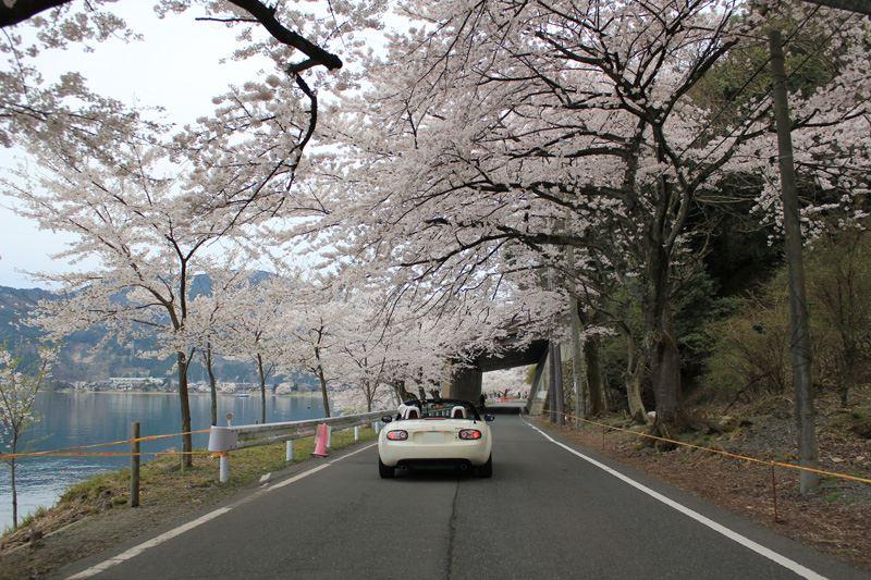 奥琵琶湖09