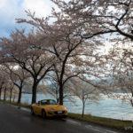2018お花見ドライブ(滋賀編)